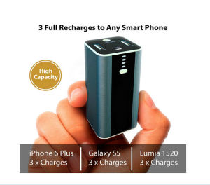 10400mAh Power Bank with LED Flashlight Dual USB Port-Shenzhen Fengshuoxin Electronics Company Limited